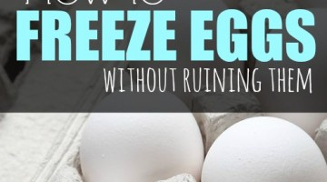 how to freeze eggs square