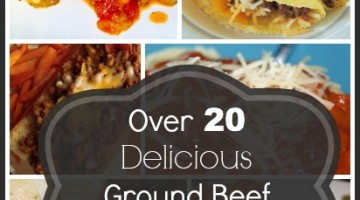 over 20 delcious ground beef crockpot recipes