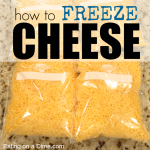 how to freeze cheese - square