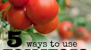 use tomatoes square