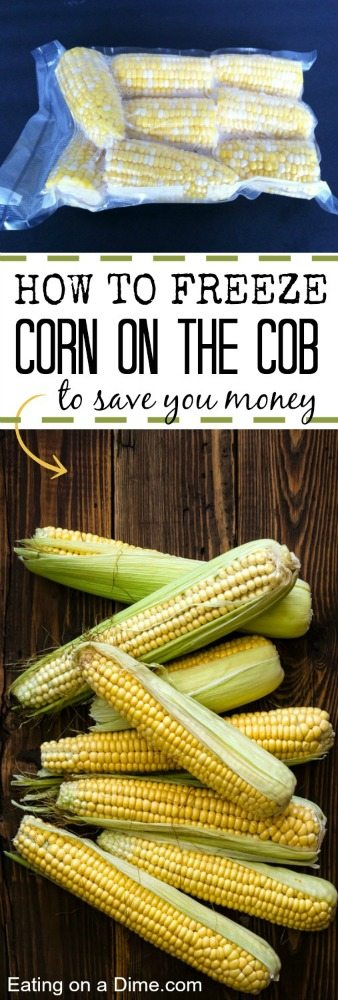 how to freeze corn on the cob to save you money